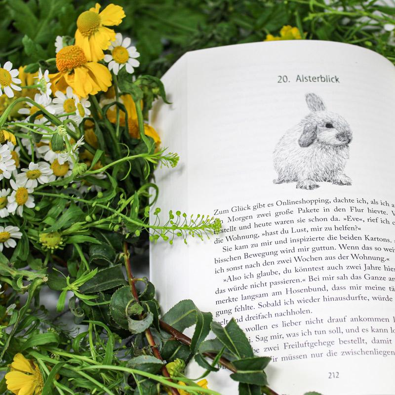 Kuscheln verboten! der neue illustrierte Roman von Janina Venn-Rosky