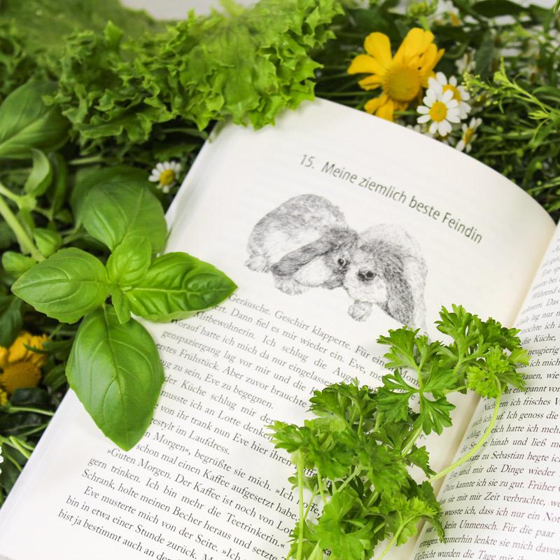 Kuscheln verboten! Roman mit zahlreichen Illustrationen von Kaninchen