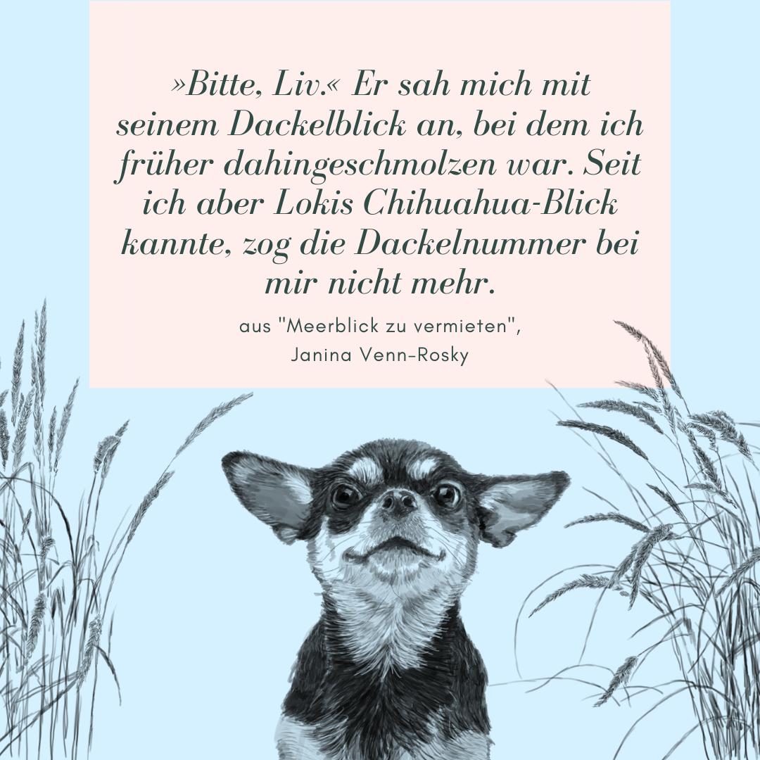 Meerblick zu vermieten: Lesespass mit Ostsee-Feeling